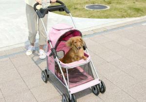 как изготовить коляску тележку для собак кошек предметы одежды для