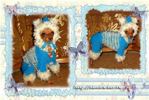 Одежда для собак - Одежда для маленьких собак - Попонки для собак - Свитера для собак.